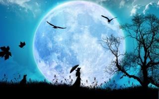 noite-com-lua-cheia-